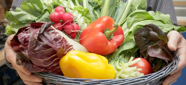 Diet for arthrosis of the joints and spine.