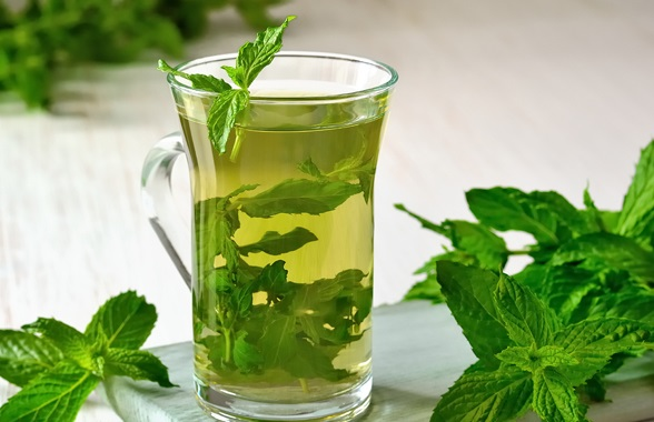 Mint infusion for weight loss.